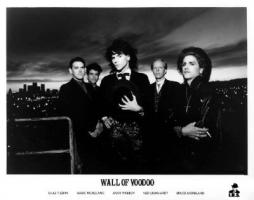 Wall of Voodoo Publicity Photo